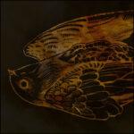 MOANAA – atmosphärischer Post-Doom im 'Lie' Clip