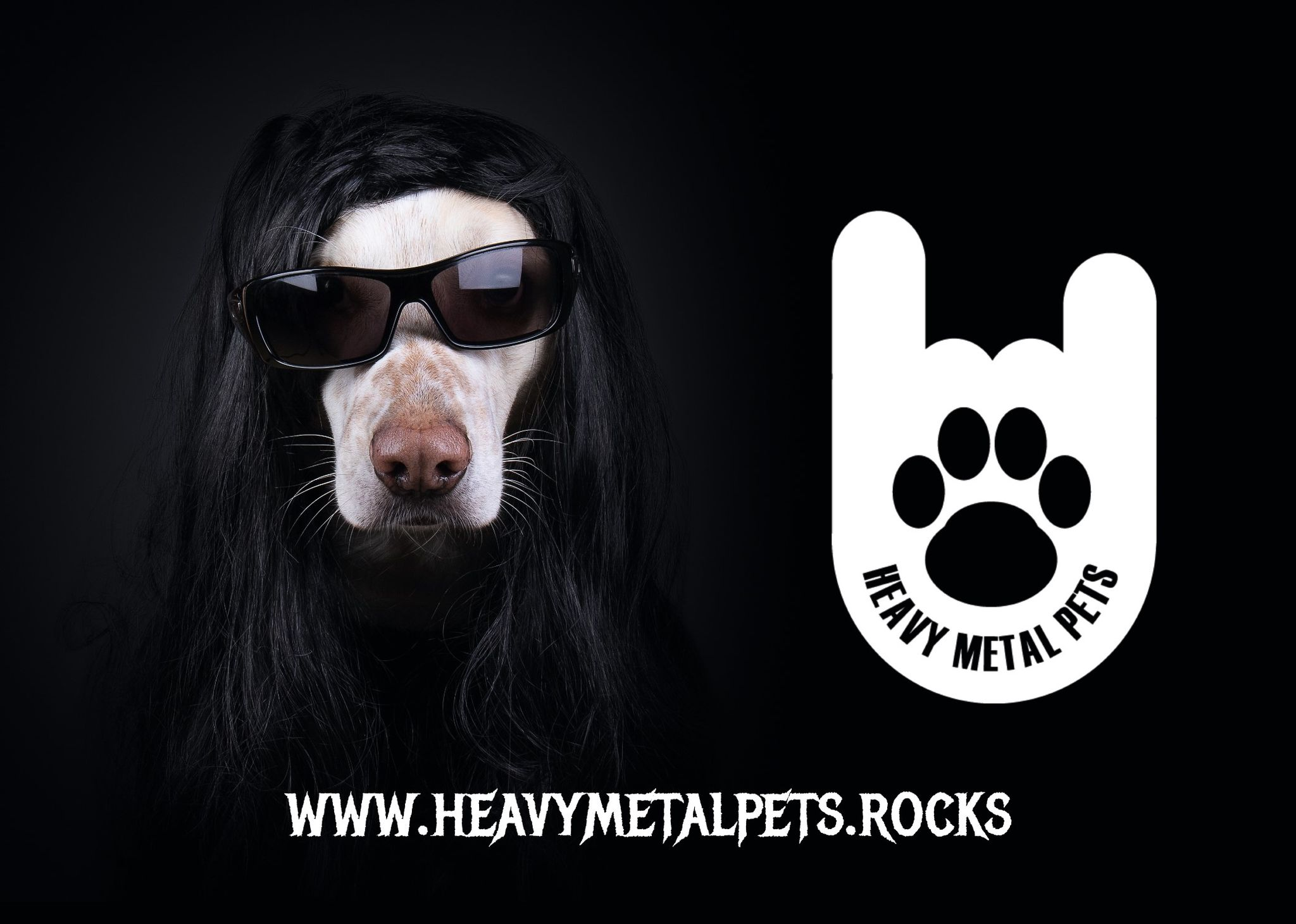 You are currently viewing HEAVY METAL PETS – Metaller helfen Tieren in Not
